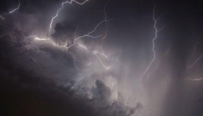 В Барнауле от удара молнии отвалилась кора с дерева
