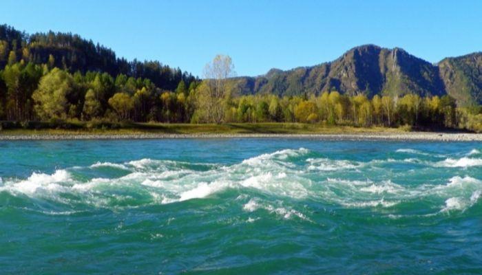 Полуторагодовалый ребенок утонул в реке Горного Алтая