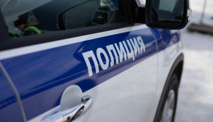 Жительница Алтайского края убила 90-летнюю мать крышкой от кастрюли и кочергой