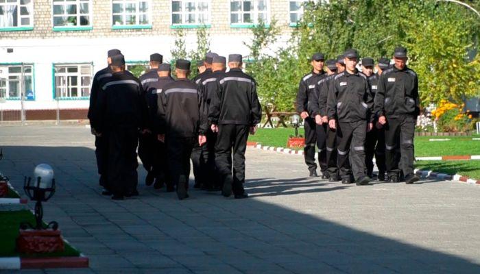 На Алтае задержали 70 человек, пытавшихся откосить от тюрьмы