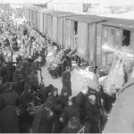 Воины-герой: какой вклад внесли в Победу жители Барнаула