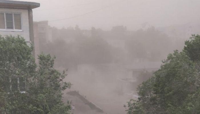 Оборванные ветки и провода: песчаная буря накрыла Рубцовск