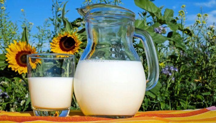 На Алтае возбуждено второе дело по ценовому сговору на рынке молока