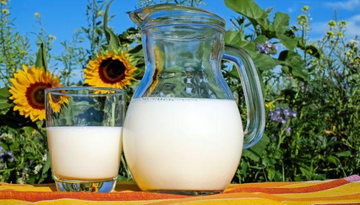 Молоко на 26 млн рублей украли в Алтайском крае