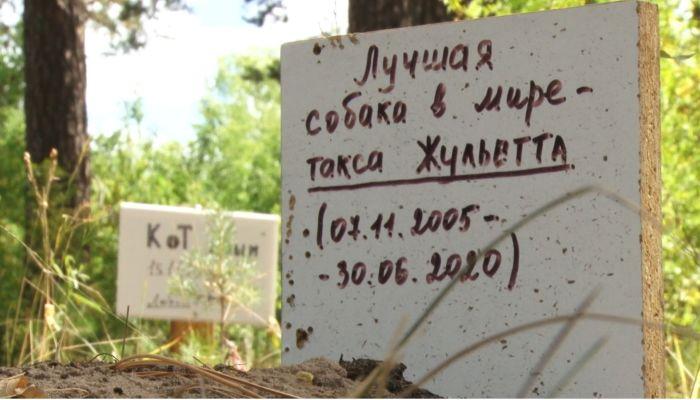Депутат и ветеринары оценили идею создания в Барнауле кладбища домашних животных