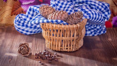 Из Алтайского края стали вывозить тонны кедрового ореха и лекарственных трав