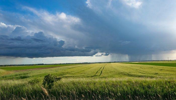Шквалы ветра, ливни, грозы: штормпрогноз передали в Алтайском крае