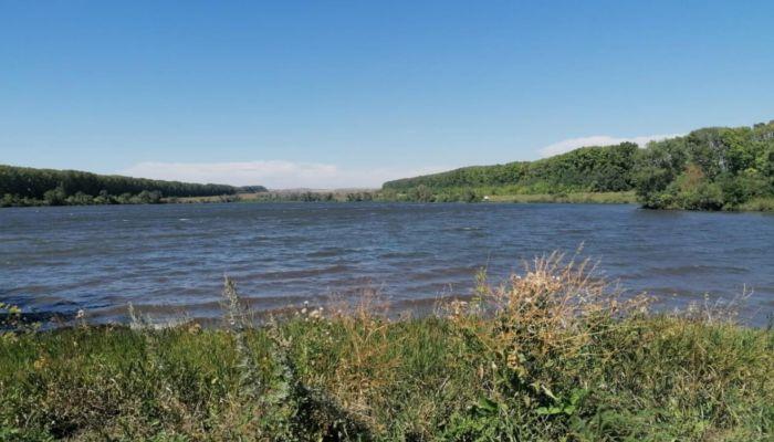 Дележка пруда в Алтайском крае едва не закончилась рукоприкладством