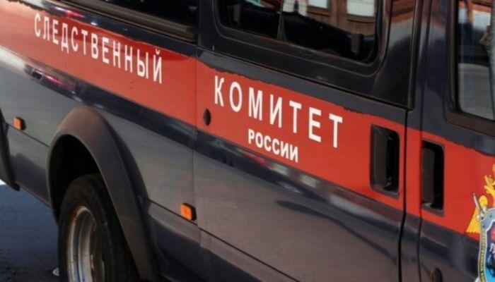 Два медведя загрызли 11-летнего мальчика в Краснодарском крае