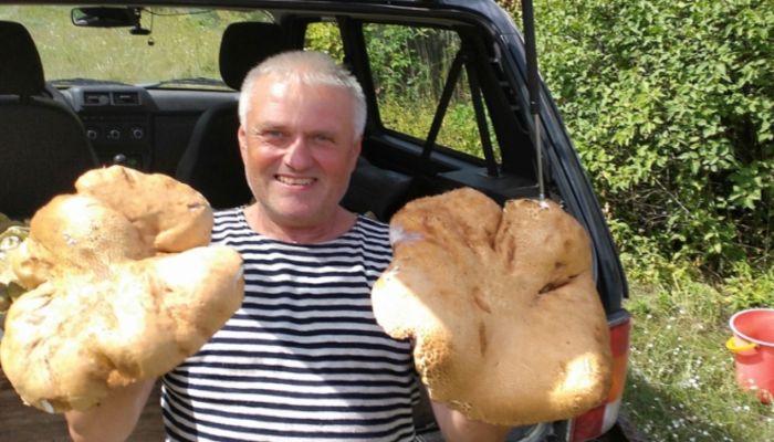 Белые гиганты: в барнаульском ленточном бору обнаружены грибы-великаны