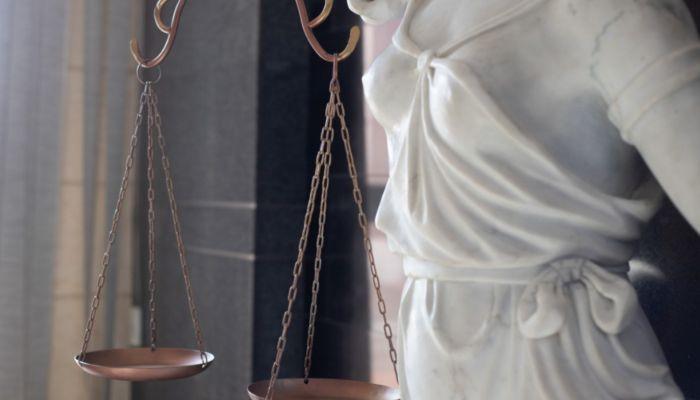 Забрали авто и не посадили: приговор экс-директору Горзеленхоза вступил в силу