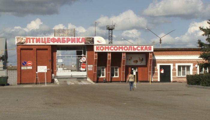 Невыносимая вонь: жители алтайского посёлка жалуются на работу птицефабрики