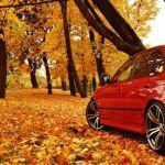 Эксперт рассказал, как подготовить автомобиль к осени