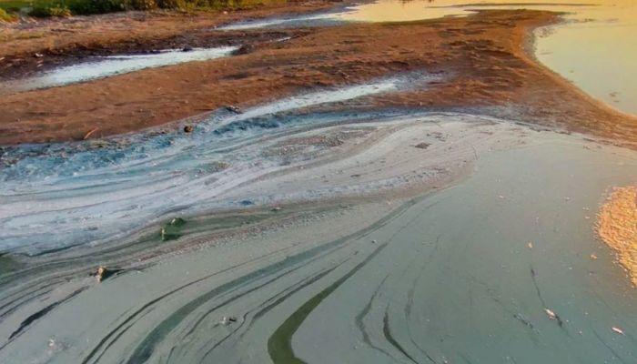 В алтайском озере, вокруг которого стояла вонь, не обнаружили следы химикатов