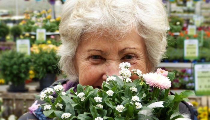 Средний размер накопительных пенсий скорректировали в Алтайском крае