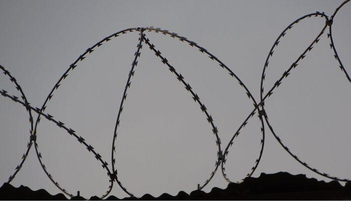 Заключенные в сибирской колонии устроили пир с запеченным поросенком