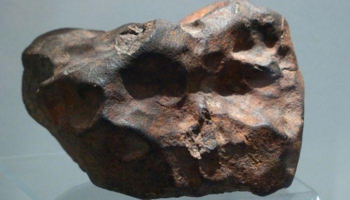 Бийчанин нашел в лесу метеорит, который по возрасту старше Земли