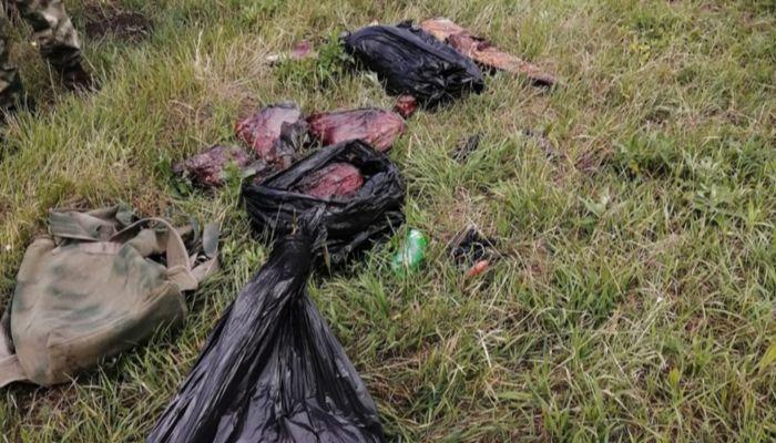 Алтайская полиция проверяет возможное участие коллеги в незаконной охоте