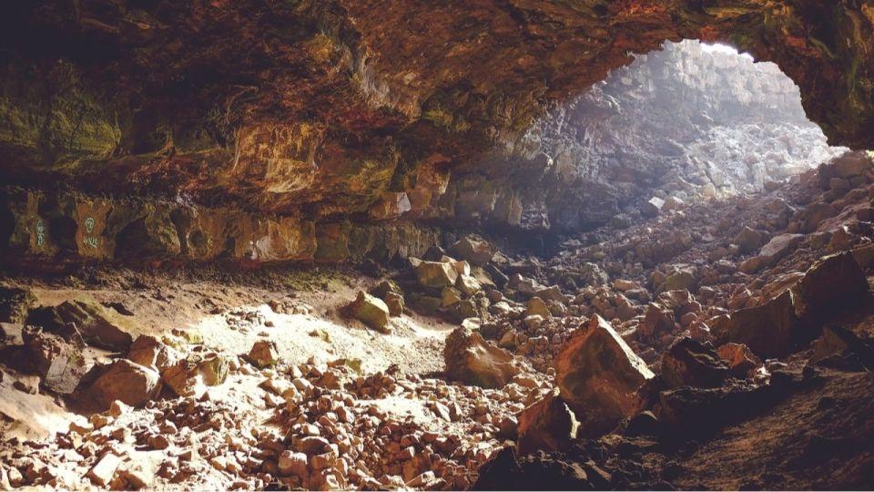 Зубы неандертальцев впервые за долгое время нашли в Алтайском крае