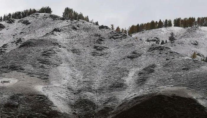 Горные вершины Республики Алтай снова засыпало снегом