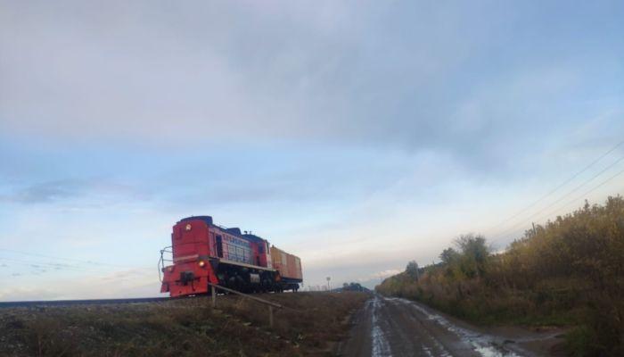 В Алтайском крае сбитый локомотивом пешеход вылетел на дорогу