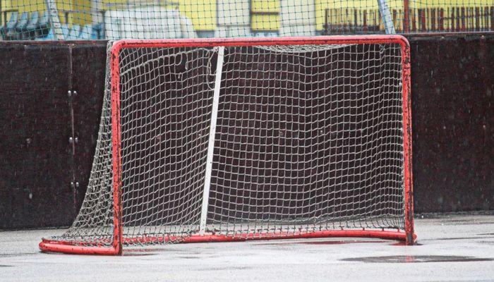 За 9 лет в Барнауле и Новосибирске погибли три хоккеиста с одинаковой фамилией