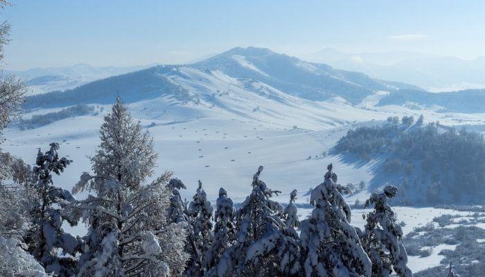 Краевой эксперт по туризму пригласила на Алтай на изоляцию