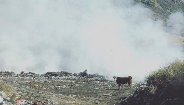 Свалка загорелась недалеко от Гейзерного озера на Алтае