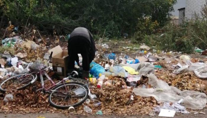 Сдаем мусор собакам. Жители алтайских сел жалуются на вывоз отходов