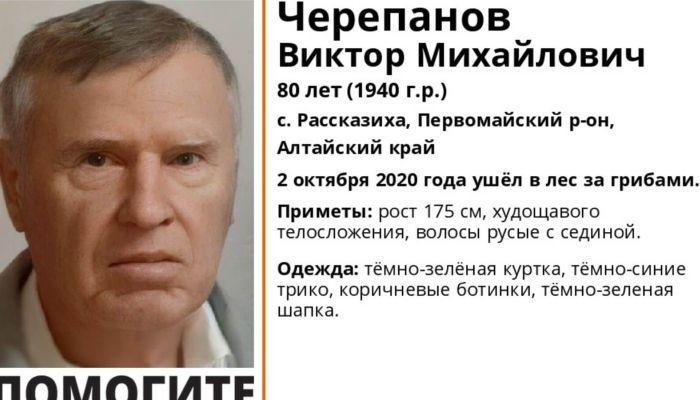 В Алтайском крае разыскивают 80-летнего грибника из Рассказихи