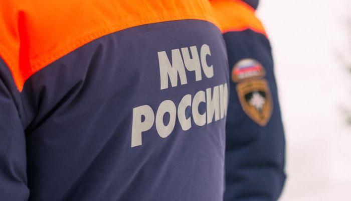 На Алтае спасатели нашли пропавших в лесу грибников с ребенком