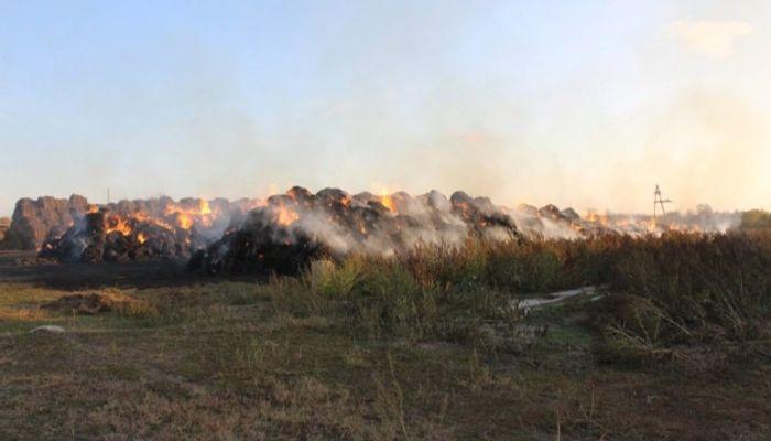 Алтайские школьники сожгли сено на миллион рублей
