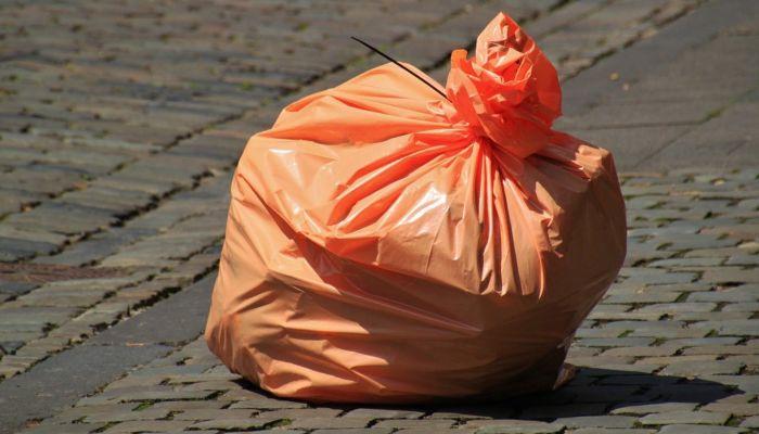 Алтайский край занял 29-е место в рейтинге самых мусорящих регионов РФ