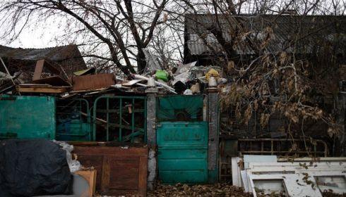 Жителей алтайского села терроризируют крысы и собаки с соседской свалки