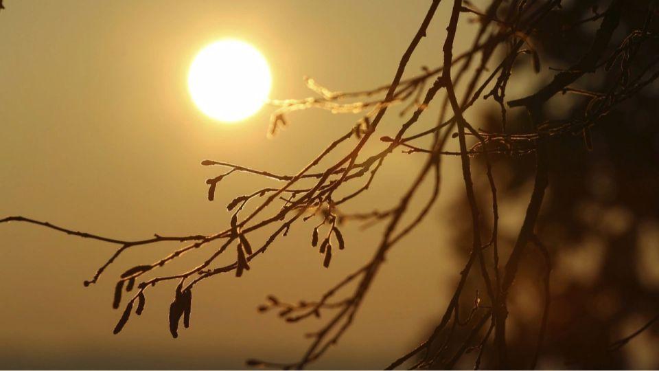 Потепление до +10 градусов придет в Алтайский край в выходные