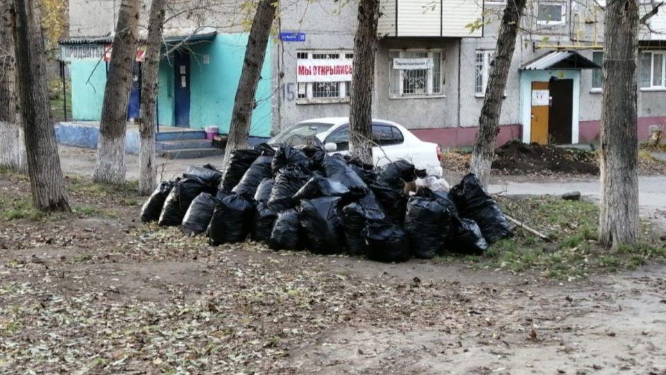 За последний месяц в Барнауле убрали 40 мусорных свалок
