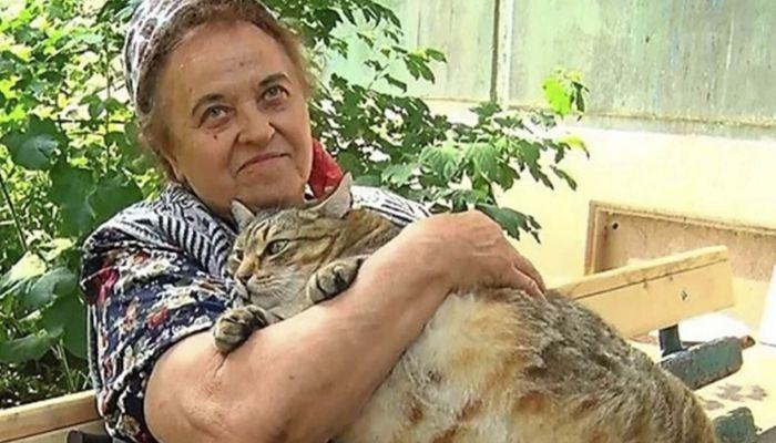 Толстого бийского кота, набравшего 20 кг, посадили на диету