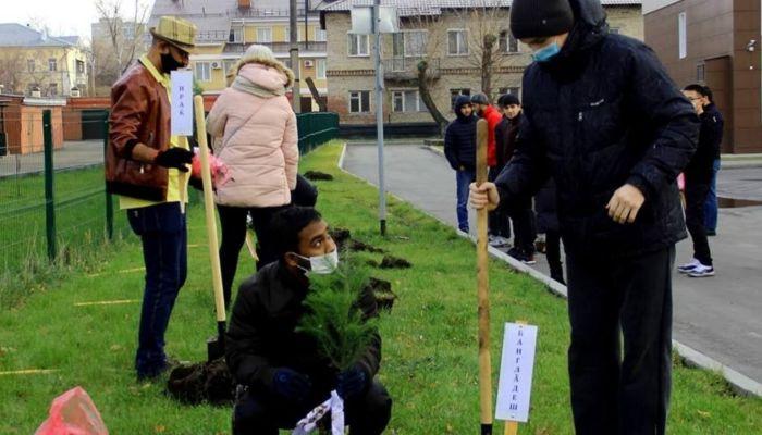 Аллею единства заложили в Барнауле студенты из разных стран