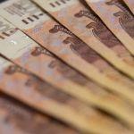 Почти 9 млн рублей выделят пострадавшему от пандемии алтайскому бизнесу