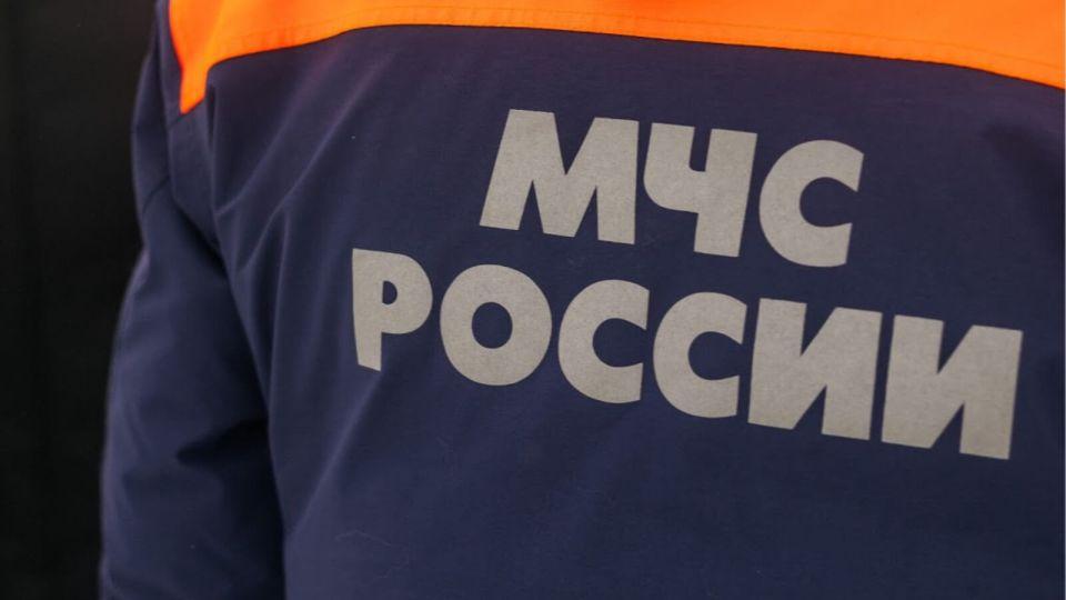 На Аллее Славы пожарных и спасателей в Барнауле высадят сотню деревьев
