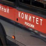 В Новосибирске возбудили дело против медсестры, таскающей ребенка за волосы