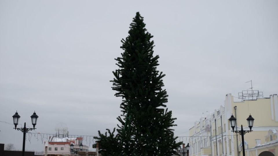 Новогодние елки отменят в Алтайском крае из-за сложной эпидситуации