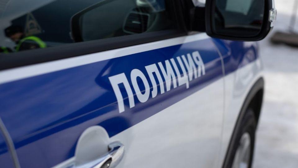 Резня в Подмосковье: неизвестный убил двух женщин и ранил шестилетнюю девочку