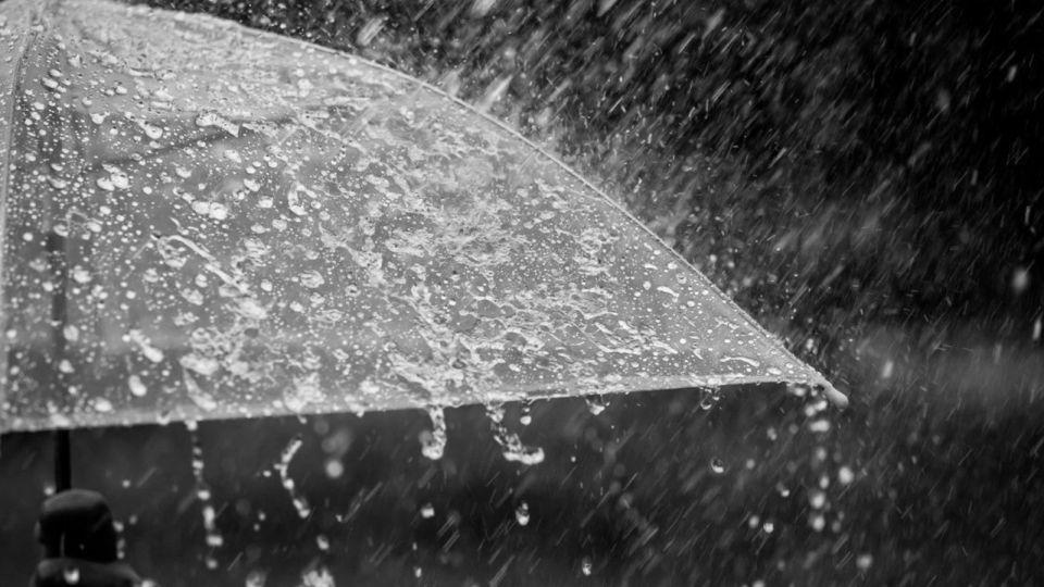 Дождь и сильный ветер сменят тепло 9 ноября в Алтайском крае