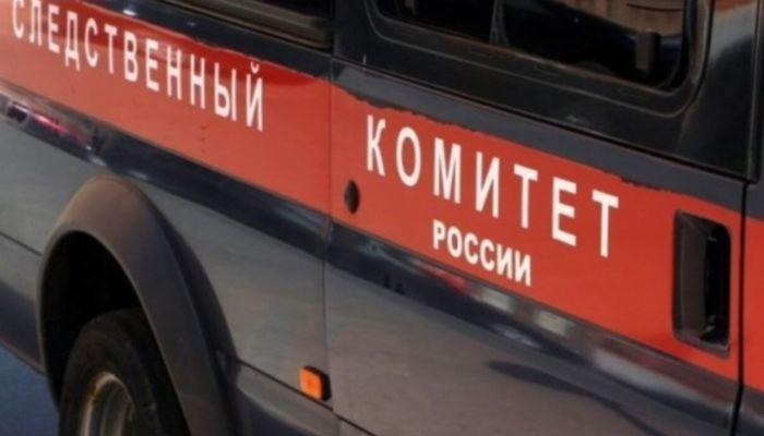 Вынес тело ночью и закопал: на Урале изнасиловали и убили 11-летнюю девочку