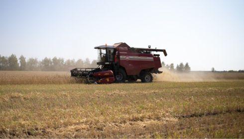 Какие аграрные предприятия Алтайского края зарабатывают больше других