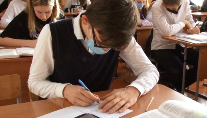 Алтайские школы смогут самостоятельно перейти на дистанционное обучение: мнения
