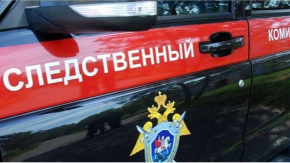 Следком сообщил подробности убийства двух детей в Москве