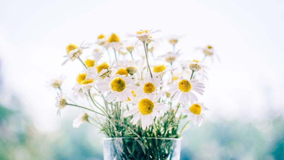 Как красиво поздравить с Днем педиатра 2020 в стихах и прозе