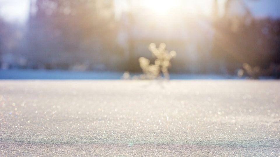 Синоптики обещают потепление 21 ноября в Алтайском крае